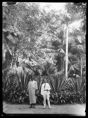 Vue du jardin de Hann (Source : CiradImages)
