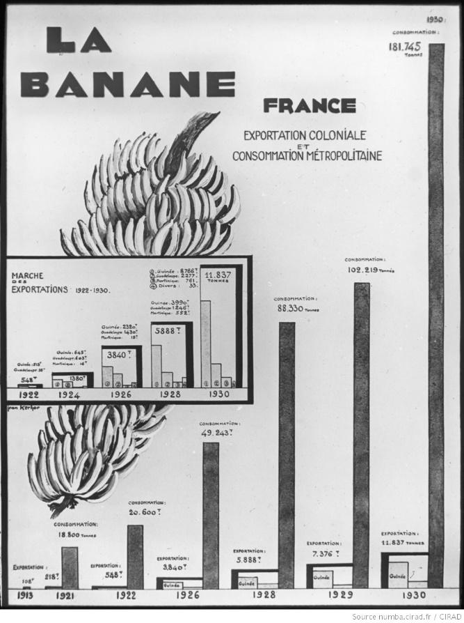 La banane en France