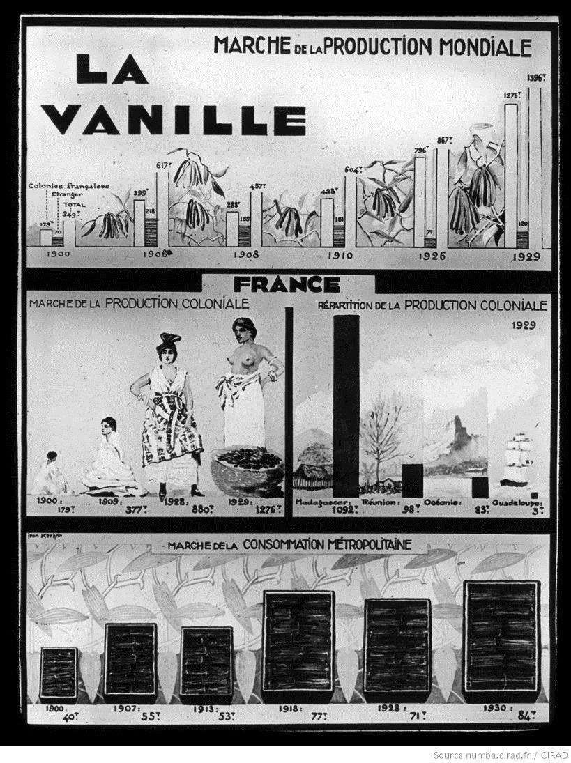 Vanille : production et consommation